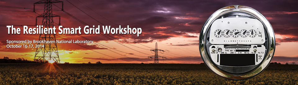 The Resilient Smart Grid Workshop @ Brookhaven National Laboratory | Upton | New York | United States