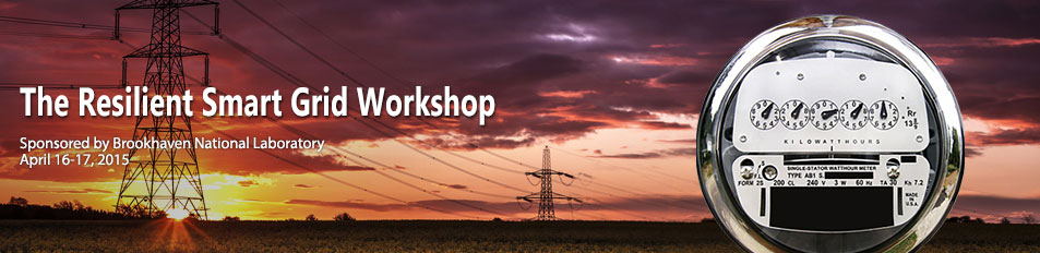 The Resilient Smart Grid Workshop - Spring 2015 @ Brookhaven National Laboratory | Upton | New York | United States